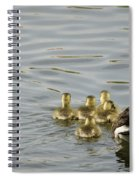 Swimming Lessons Spiral Notebook