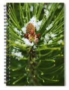 Swirls Of Green Spiral Notebook