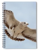 Swooping In For A Meal Spiral Notebook