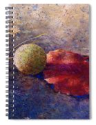 Sycamore Ball And Leaf Spiral Notebook