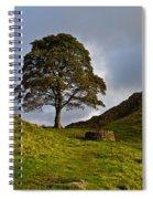 Sycamore Gap Spiral Notebook