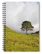 Sycamore Gap II Spiral Notebook