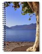 sycamore tree at the Lake Maggiore Spiral Notebook
