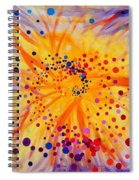 Symmetry Breaking Spiral Notebook