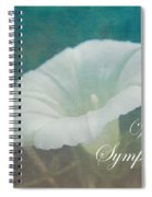 Sympathy Greeting Card - Wild Morning Glory - Bindweed Spiral Notebook