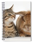 Tabby Kitten With Rabbit Spiral Notebook