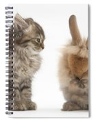 Tabby Kitten With Young Rabbit, Grooming Spiral Notebook