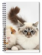 Tabby-point Birman Cat And Guinea Pig Spiral Notebook
