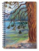 Tahoe Light Sugar Pine Point State Park Spiral Notebook