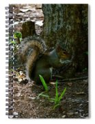 Tailfeathers Spiral Notebook