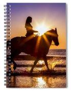 Taking In The Sun Spiral Notebook
