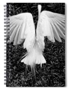 Taking Off Spiral Notebook