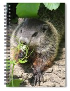 Taking Time To Smell The Flowers Spiral Notebook