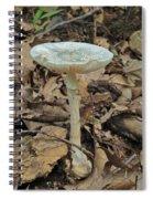Tall Green Amanita Mushroom Spiral Notebook