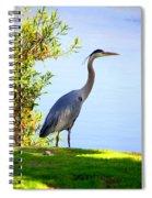 Tall Grey Heron Spiral Notebook