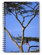 Tall Serengeti Tree And Baboon Spiral Notebook