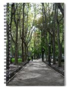 Tall Trees Of Madrid Spiral Notebook