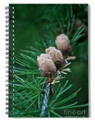 Tamarack Trio Spiral Notebook