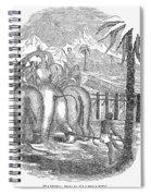 Taming Wild Elephants Spiral Notebook