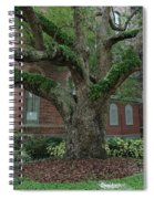 Tampa Tree  Spiral Notebook
