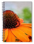 Tangerine Summer Spiral Notebook