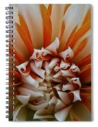 Tangerine Tinged Spiral Notebook