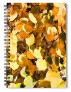 Taos Gold Iv Spiral Notebook