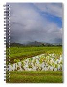 Taro Storm Spiral Notebook