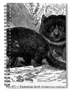 Tasmanian Devil Spiral Notebook