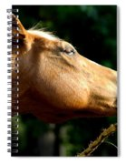 Tasty Branch Spiral Notebook