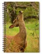 Tasty Leaf Spiral Notebook