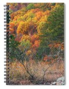 Taum Sauk Mountain Glade IIi Spiral Notebook