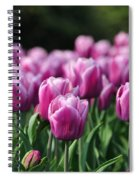 Taylor's Tulips Spiral Notebook