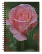 Tea Rose - Asia Series Spiral Notebook