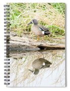 Teal Duck Standing On A Log Spiral Notebook