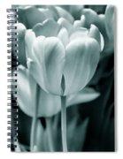Teal Luminous Tulip Flowers Spiral Notebook