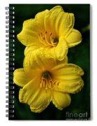 Team Sunshine Spiral Notebook
