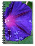 Tearful Spiral Notebook