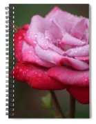Tears From Heaven Spiral Notebook