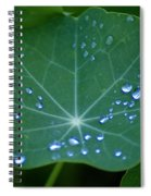 Tears Of Dawn Spiral Notebook