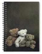 Teddy Bear Family Spiral Notebook