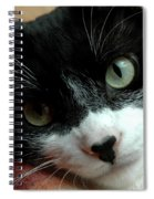 Tell Me About Your Day Spiral Notebook