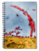 Tem Of Influenza Virus Spiral Notebook