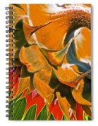 Temperatures Rising Spiral Notebook
