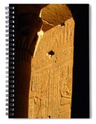 Temple Of Philea Egypt Spiral Notebook
