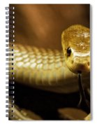 Tempter Spiral Notebook