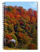 Tennessee Fall Spiral Notebook