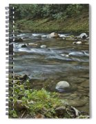 Tennessee Stream 6049 Spiral Notebook