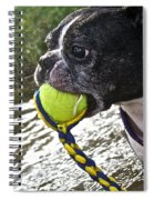 Tennis Ball Mist Spiral Notebook