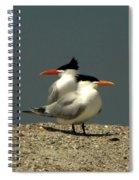Terning Heads Spiral Notebook